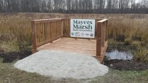 Mayers Marsh Viewing Platform (1)